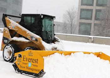 bobcat-pushing-snow